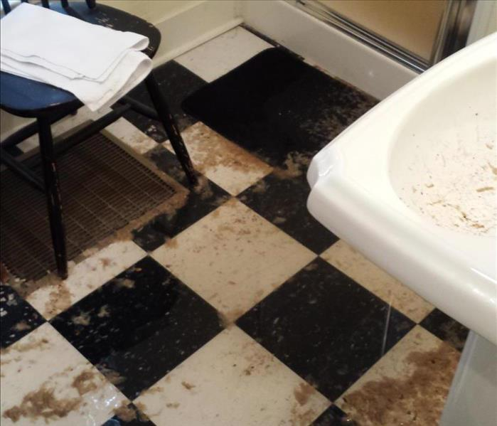 Sewage Back-up at Residential Property Before