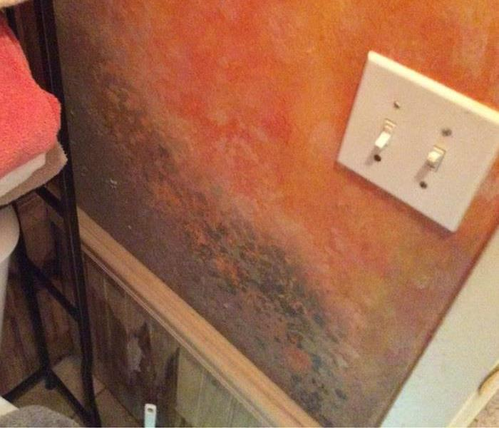 Residential Mold Remediation in Summerdale, AL