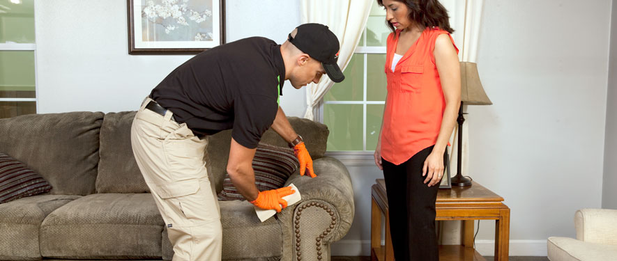 Daphne, AL carpet upholstery cleaning