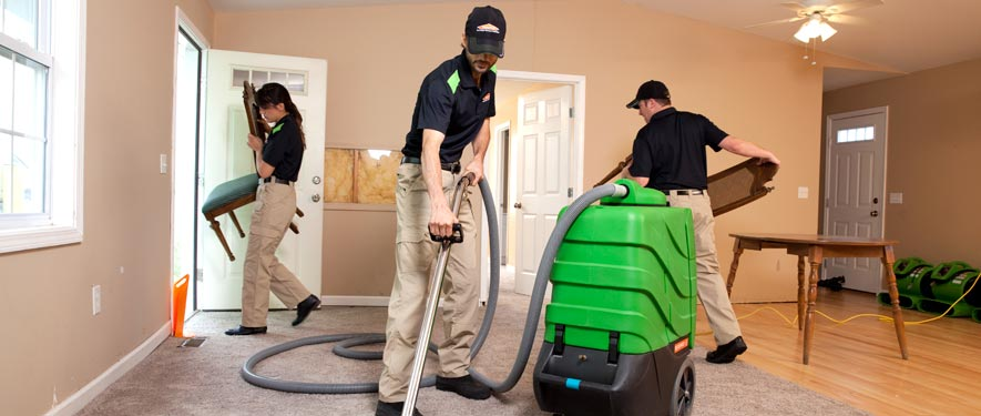 Daphne, AL cleaning services